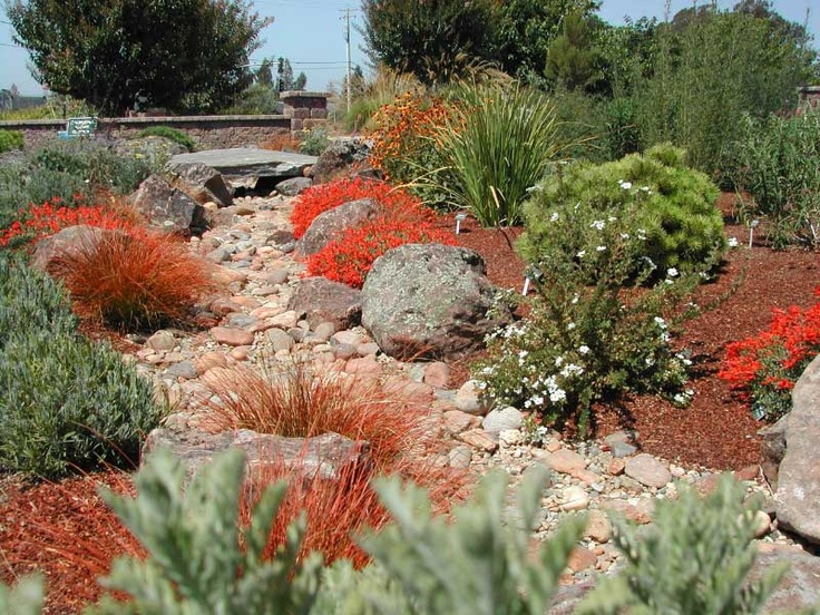 39 best Xeriscape Ideas images on Pinterest Landscaping ideas