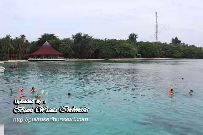 Snorkeling Area at pulau pantara - kepulauan seribu