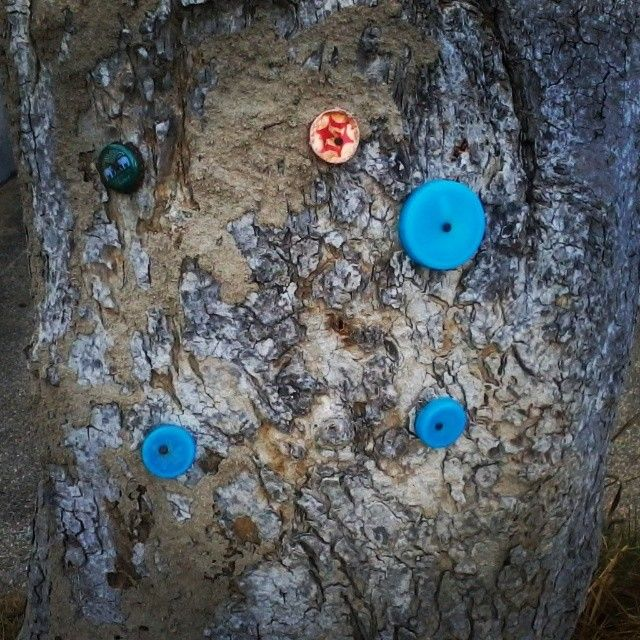 На дереве прибиты крышки от пива и воды. Чтобы это значило? Есть версии? #dart_tai #samui #LTC #livetrip