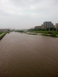 今朝の室見川の状況です ここ数日の雨でかなり水位が上がっていました 自転車の方は特に注意して運転しましょう tags[福岡県]