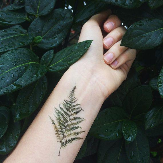 This set includes:  Watercolor Fern x 1pcs Size: 7cm >>>DIRECTIONS OF USE<<< How long do the tattoos last? Our temporary tattoos usually last up to 2 to 5 days depending on the applicable area.  Easy Application: >1. Cut out the tattoo of your choice and remove the protective clear transparent cover. >2. Place the tattoo face down on to the desired applicable area you wish to apply. >3. Soak a sponge with regular water and wet the surface of the tattoo thoroughly. &...