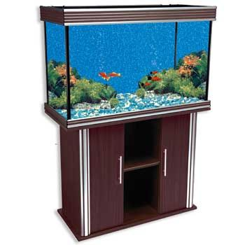 1000 ideas about 75 gallon aquarium stand on pinterest for 55 gallon fish tank petco