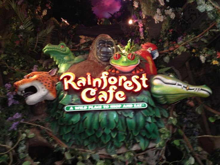 Rainforest Cafe Baltimore Maryland