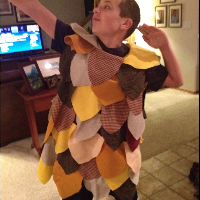 81 best owl costume ideas images on pinterest beauty makeup need an easy owl costume for a spring play i made this for evan last solutioingenieria Images