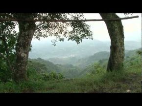 Video para hablar sobre el medio ambiente