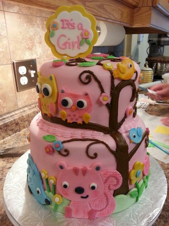 Baby shower cake for girls:) owls