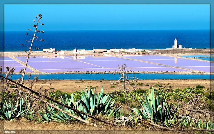 http://www.flickr.com/photos/indalo04/ ALMERIA SALINAS