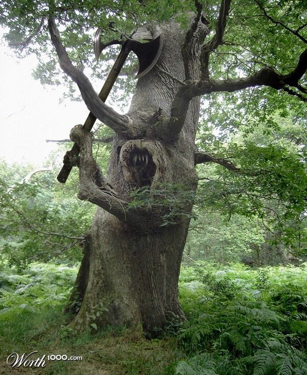 ok what garden would be complete without this awesome tree??
