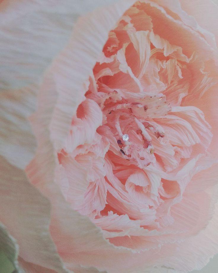 Detail David Austen Paper Rose