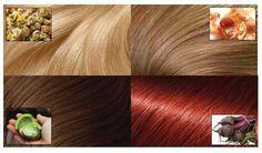 <p>A imensa maioria das pessoas não sabe que é possível pintar o cabelo usando métodos naturais e caseiros.  Pois é, dá para pintar o cabelo sem o uso de tinturas químicas. Veja como: -PARA CABELOS PRETOS INGREDIENTES Pó de café (de preferência, orgânico) Água MODO DE PREPARO Faça um …</p>