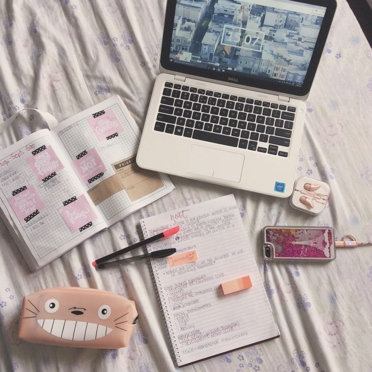 "chrissiestudies: "" 2nd Quarter has started and I'm even more motivated to keep my notes clean and organized than ever. Expect more posts from me (im taking suggestions ). """