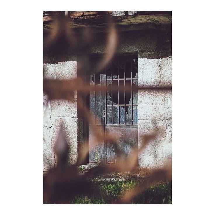La puerta del recuerdo _ The door of remembrance imarchi      #door #doorway #doorporn #puerta #focusonbackground #backgroundphotography #growth #blurred #blurredforeground #roadtrip #day #outdoors #Stress #Tranquility #scenics #nopeople #navacerrada #Madrid #igersmadrid #ig_madrid #instamadrid #spain #españa #picoftheday #photooftheday   Imarchi photography  Also in Instagram here: http://ift.tt/2BrGlRs photographers on tumblr original photography Spanish photographers imarchi imarchi.com…