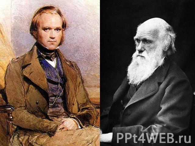 """Презентация на тему """"Чарльз Дарвин и Эволюционное учение"""" - скачать бесплатно презентации по Биологии"""
