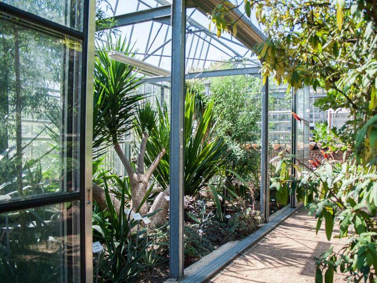Le muséum et le jardin botanique de Toulouse
