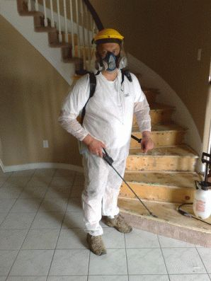 Mold removal recipes - knowing how to kill mold, symptoms of mold exposure, mold allergy symptoms and air tests to protect you from household mold is vital.