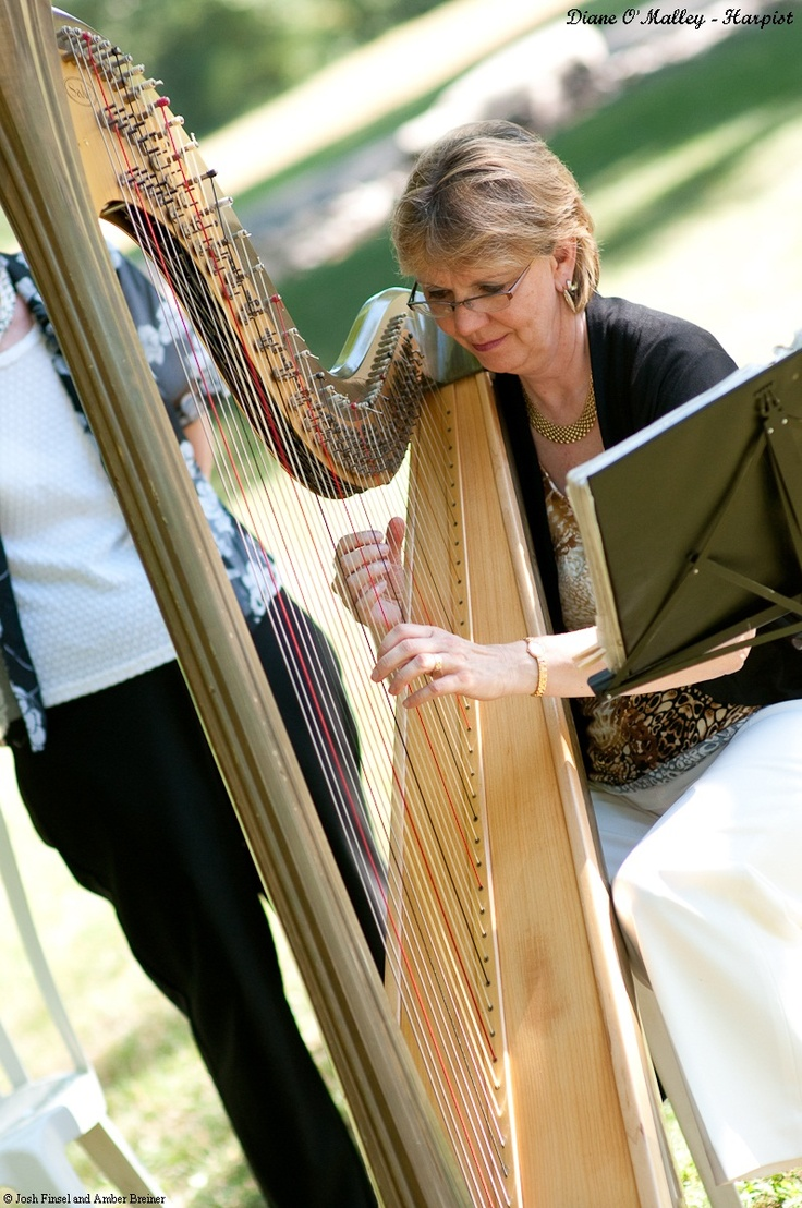 Beautiful harp music for your Pocono wedding ceremony, cocktail hour and dinner!