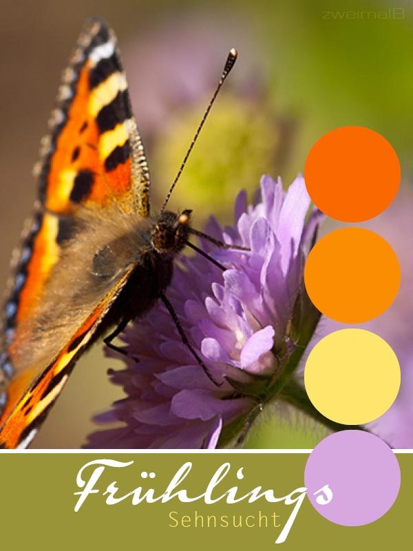 17 Best Ideas About Fliederfarben On Pinterest Flieder Farben Arten Fakten Pflege