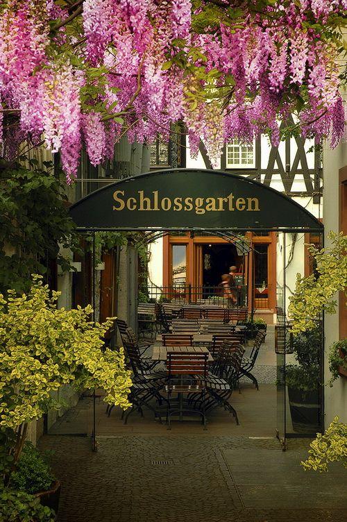 SCHLOSSGARTEN IN RUDESHEIM AM RHEIN, HESSEN, GERMANY. Just a few minutes drive from where we lived in Wiesbaden!
