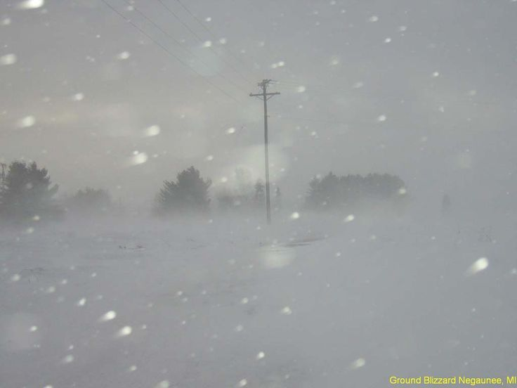 """Picture of """"white-out"""" blizzard conditions in Manitoba, Canada"""