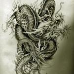 Oriental Dragon Tattoo Style (6)