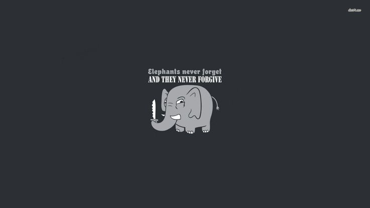 Cage The Elephant Wallpaper , (56+) image collections of ...
