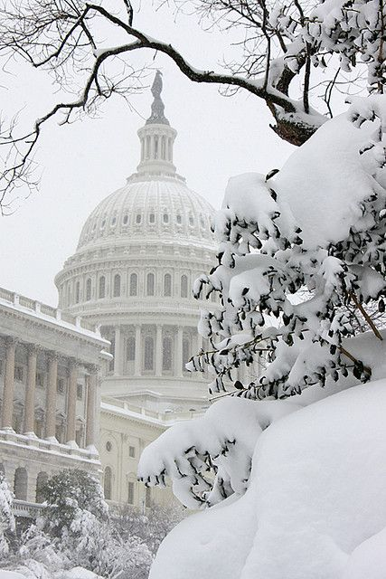 Capitol Building, Washington DC snow blizzard of 2010 - ©Ian Livingston www.flickr.com/photos/ianlivingston/4364584424/in/set-72157623443621264