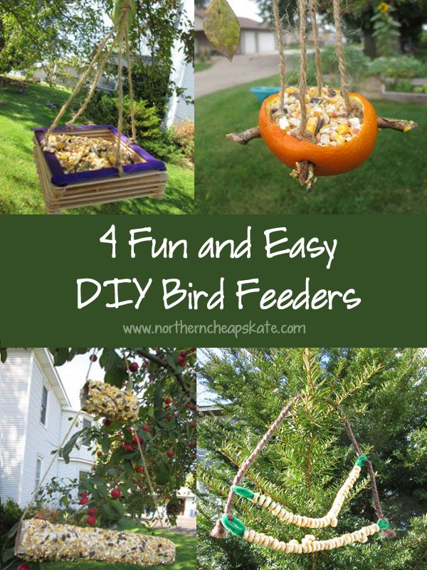 Fun Bird Feeder Crafts