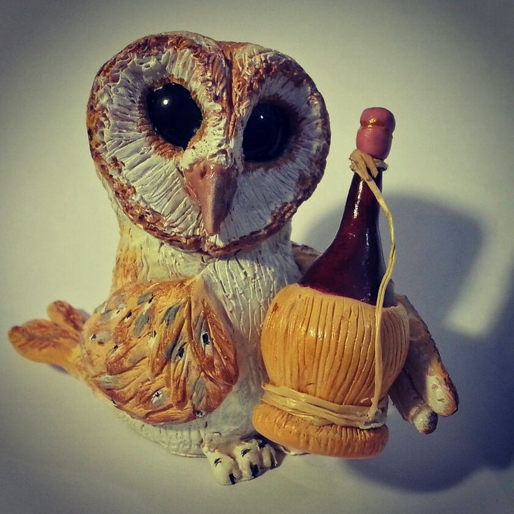 Drunked barnowl