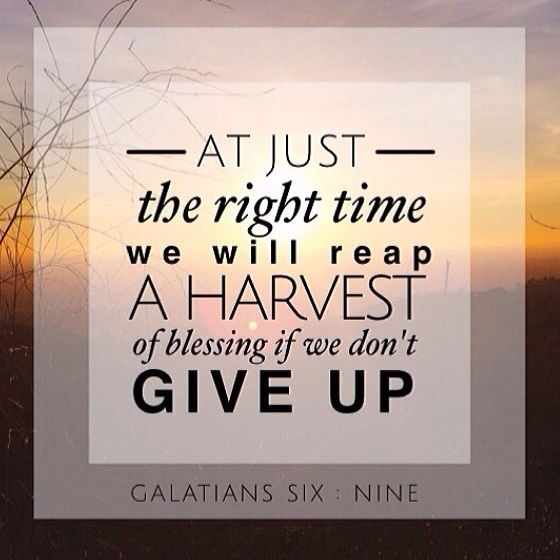 Persistence Motivational Quotes: 17 Best Images About SCRIPTURE & SPIRITUAL On Pinterest