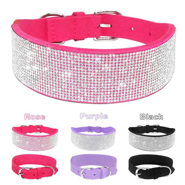 Tag a friend who would like this Hot Bling Dog Collar     FREE worldwide shipping    https://www.pawsify.com/product/hot-bling-dog-collar/