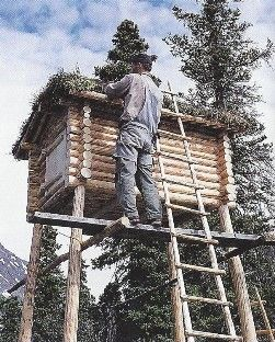 Building the cache