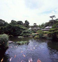Japanese Garden;  In this garden is the Seisen Pond.