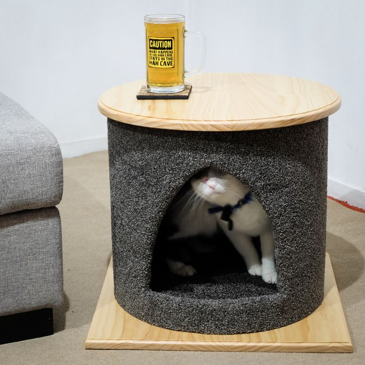Cat Bed/Coffee Table - Pet Stuff