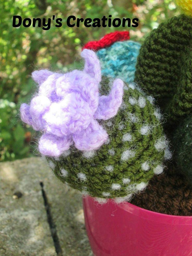 165 migliori immagini piante grasse e fiori su pinterest - Piante grasse con fiori ...