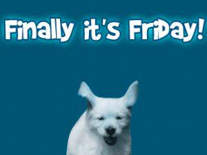 Finally it's Friday! days dog friday gif jump happy friday days of the week weekdays friday greeting