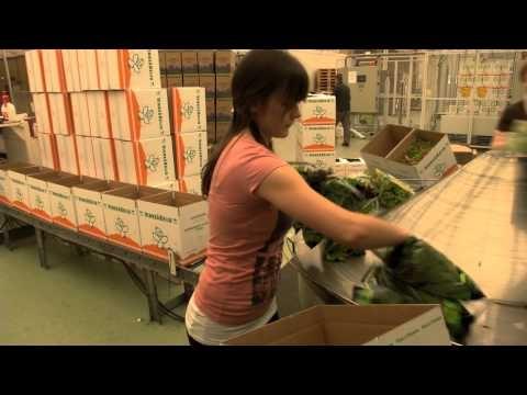 Ikuinen kesä - Kyröntarhat Oy -video