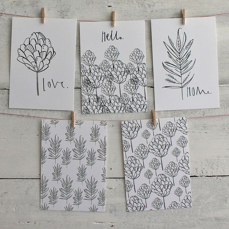Botanical postcard set - monochrome, practical and lovely.