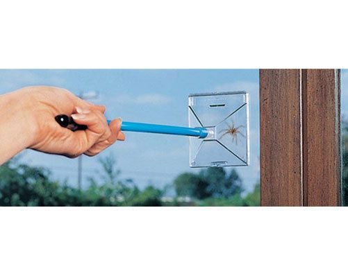 Katcha Bug' Insect And Spider Trap - humane trap pest flies catch killer #Kleeneze