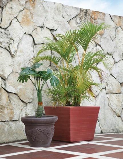 Para que tus plantas se vean divinas.
