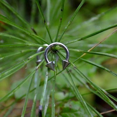 Horseshoe Rings