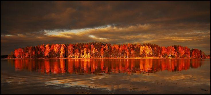 Lake Saimaa during ruska