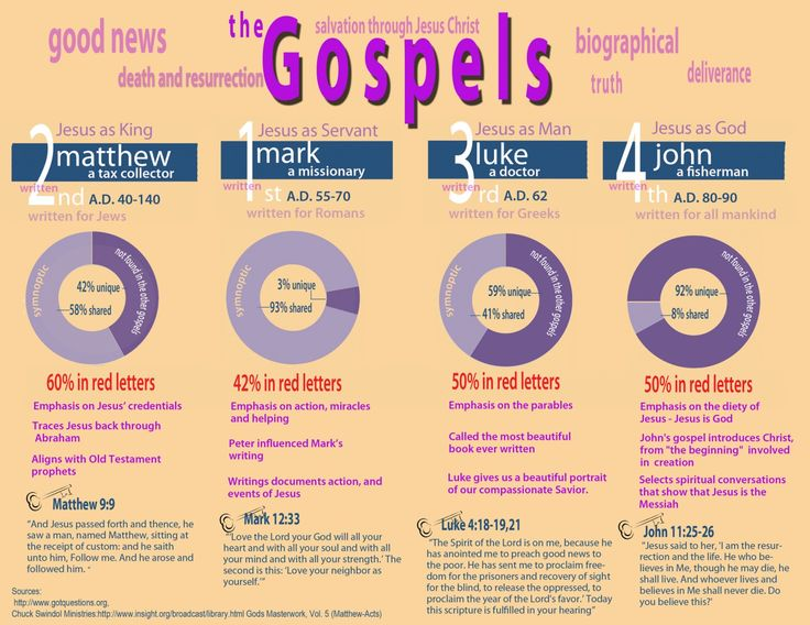 The Gospels Infographic