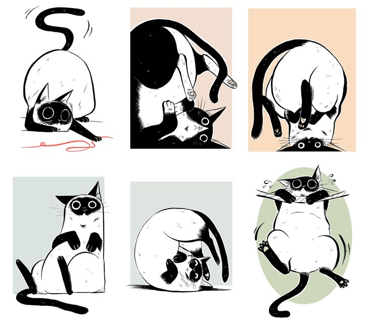 Emi Lenox - Cat Style