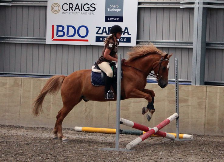 Me and cracker at our jumping
