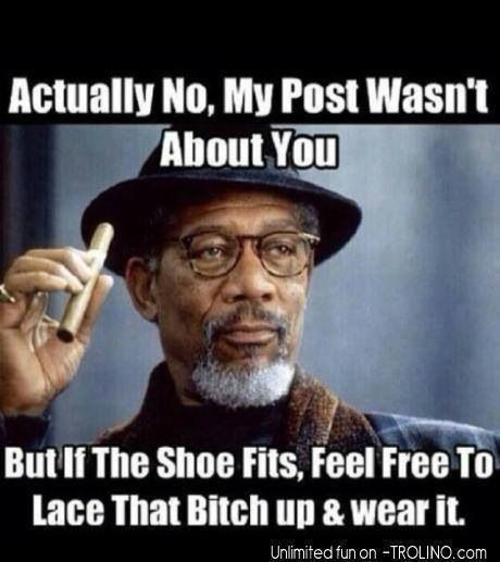 Morgan Freeman most likely didn't say this but it is too cool to think he did. This quote is too funny and too true no matter.