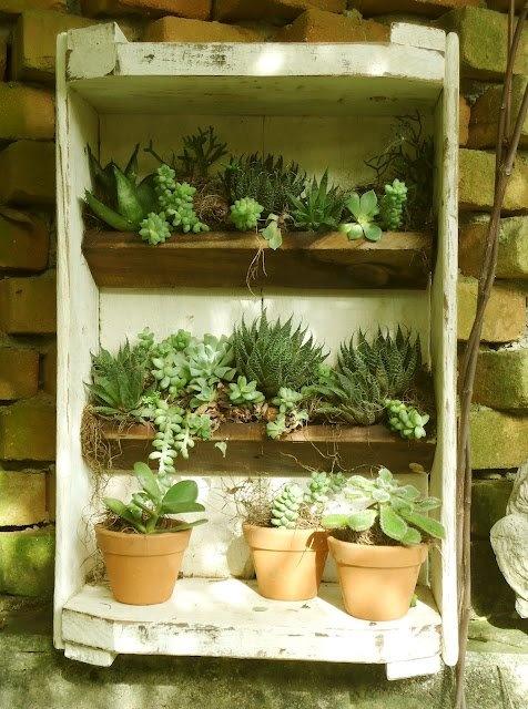 Mini jardim com caixa de feira. Reciclagem Pinterest ...