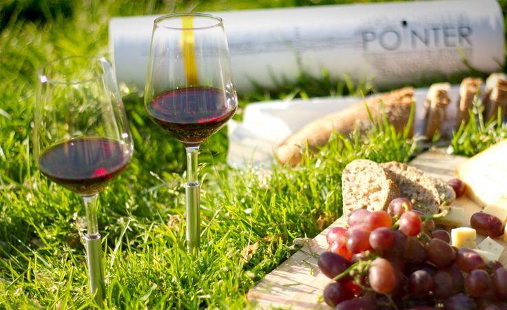Copas de Vino para Jardín Pointer