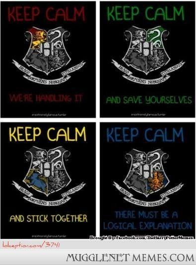 Is anybody a Ravenclaw on Mugglenet Interactive?
