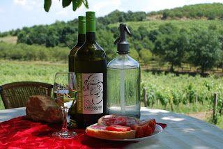 Mindszentkálla - Kőróka Pincészet, borkóstolás, borterasz