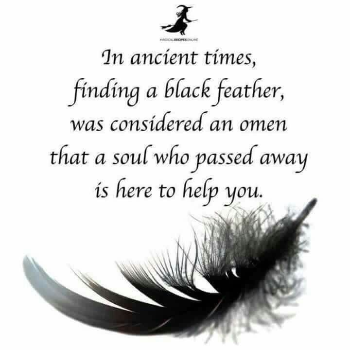 •°• P a g a n Magick •°• black feather - Pinned by The Mystic's Emporium on Etsy